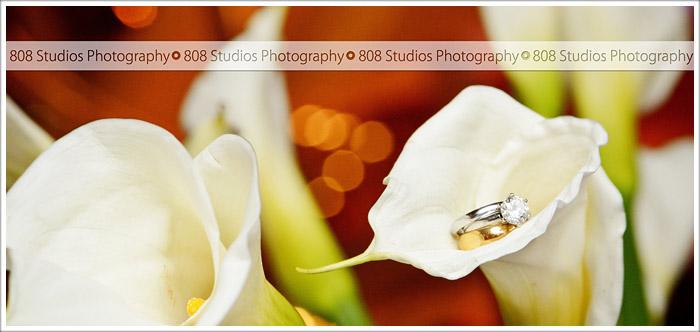 808 STUDIOS 713_0816